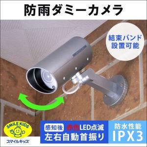 旭電機化成 防雨ダミーカメラ ADC-205