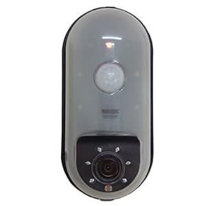 リーベックス SDカード録画式センサーカメラ CMOS-30万画素 電池式 センサーライト付 SD1000